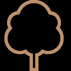 iconmonstr-tree-3-240